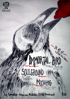 immortal bird_paper